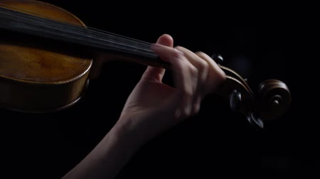 Girl fingering the strings playing on a violin. Close up. Black background