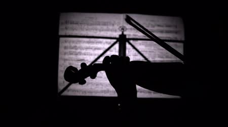 woodwind : Fingers playing the strings of a violin in the background sheets with notes. Close up. Back view. Silhouette