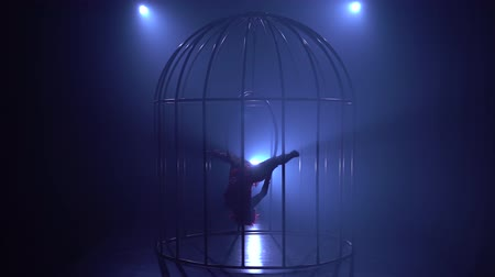 ритмичный : Silhouette of a girl spinning on the air hoop on the scene in a cages. Blue smoke background. Silhouette