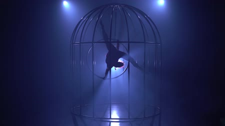 měsíců : Artist on the gymnastic hoop performs tricks in a cage on the stage in the dark. Blue smoke background. Silhouette