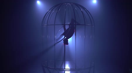 esneme : Aerial acrobatics on a rotating hoop in a metal cage. Blue smoke background. Silhouette Stok Video