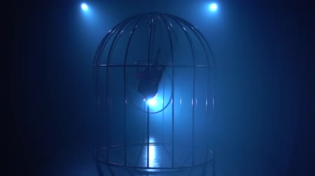 rhythmic : Girl in a cage performs gymnastic stunts on a hoop . Blue smoke background. Silhouette. Slow motion