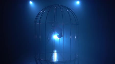 ритмичный : Stage performance of an aerial gymnast on a hoop in a cage on the stage . Blue smoke background. Silhouette. Slow motion