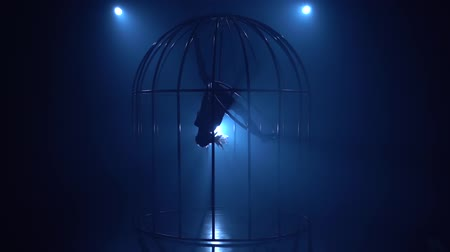 hoop : Silhouette of a girl spinning on a hoop on stage in a cages. Blue smoke background. Slow motion