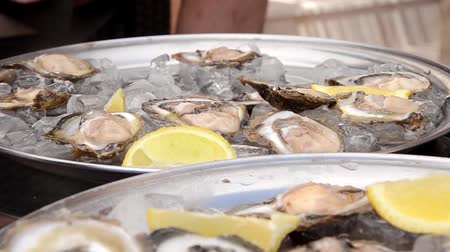 aphrodisiac : oysters close-up