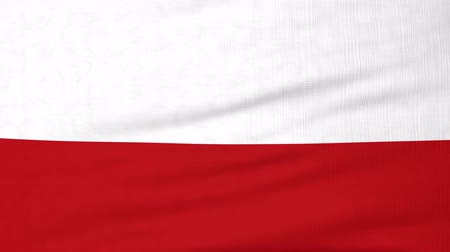 lengyelország : National flag of Poland flying and waving on the wind. State symbol of Polish nation and government. Computer generated animation.