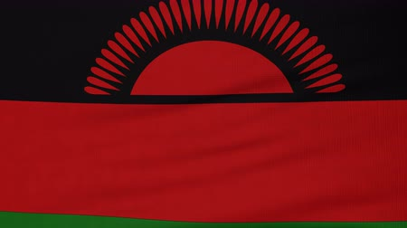 malawi : National flag of Malawi flying and waving on the wind. State symbol of Malawian nation and government. Computer generated animation.