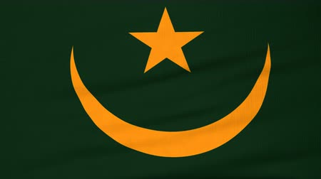 мавританский : National flag of Mauritania flying and waving on the wind. State symbol of Mauritanian nation and government. Computer generated animation.