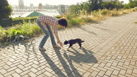 dog sitter : Young woman lovely playing with little cute dog outdoors and training jump trick on city background. Enjoying of active healthy walk with pet at summer sunny day.