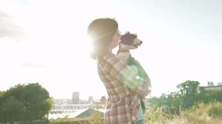 dog sitter : Young woman lovely holding on hands, stroking and caressing little funny dog outdoors on city background with backlight sun. Enjoying of active healthy walk with pet at summer sunny day.