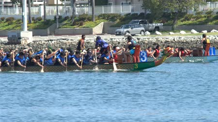 populair : Long Beach, APR 23: Dragon Boat Festival op APR 23, 2017 in Long Beach, Californië Stockvideo