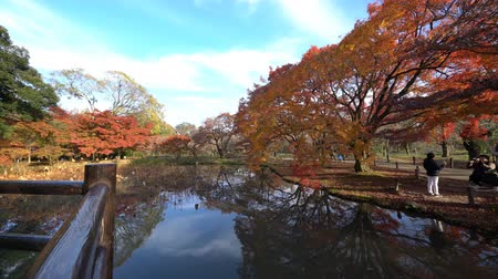 határkő : Beautiful fall color of Kyoto Botanical Garden, Kyoto, Japan