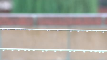 varal : Clothesline in a rainy day with water drops