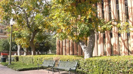 angeles : Los Angeles, MAR 16: Exterior view of the beautiful buiding in USC on MAR 16, 2018 at Los Angeles, California