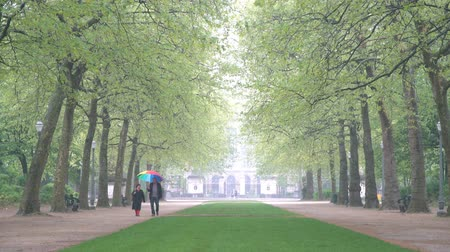 homály : The famous Brussels Park in a rainy day at Belgium