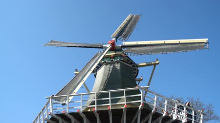 nizozemí : Windmill at the famous  Keukenhof garden, Netherlands