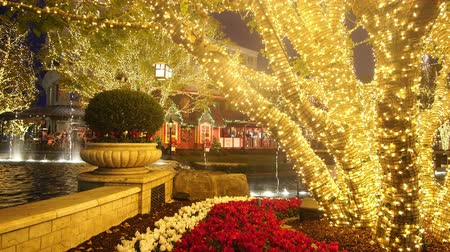 christmas dekorasyon : Los Angeles, NOV 26: Night view of the fountain in The Americana at Brand on NOV 26, 2018 at Los Angeles, California Stok Video
