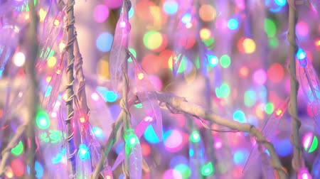 wrzesień : Close up shot of some beautiful christmas lights, showing at Quebec, Canada