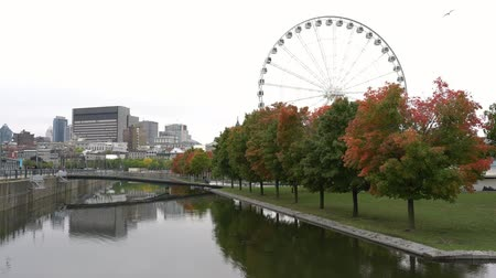 gözlem : Beautiful fall color with the La Grande Roue de Montreal observation ferris wheel at Montreal, Canada