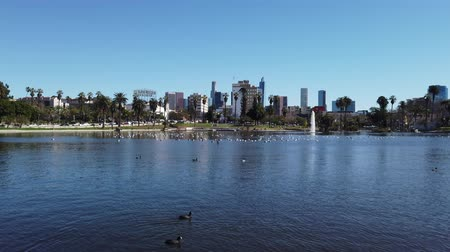 pato real : Los Angeles, FEB 6: Morning view of the Los Angeles from West Lake on FEB 9, 2019 at Los Angeles, California