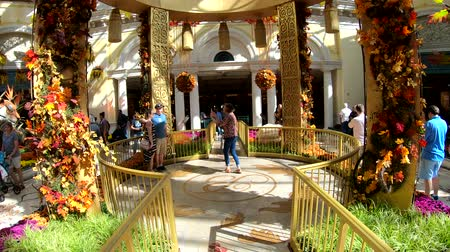 bellagio : Las Vegas, OCT 12: Interior view of the famous Bellagio Conservatory & Botanical Gardens on OCT 12, 2018 at Las Vegas, Nevada