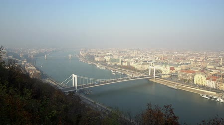 elisabeth : Aerial view of the famous Elisabeth Bridge at Budapest, Hungary
