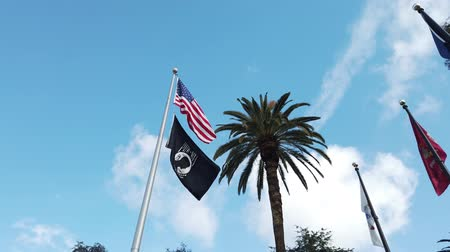 marynarka wojenna : The American and Navy flag fluttering,  Los Angeles County, California, United States