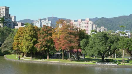 Тайвань : Nature scene around Dahu Park at Neihu District, Taiwan