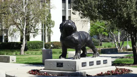 мемориал : Redlands, MAR 20: Dog statue in University of Redlands on MAR 20, 2019 at Redlands, California