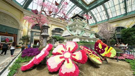 bellagio : Las Vegas, APR 28: Special Japanese spring display in Bellagio Conservatory & Botanical Gardens on APR 28, 2019 at Las Vegas, Nevada