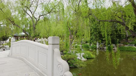 bibliotheek : Chinese stijltuin in Huntington Library in Los Angeles, Californië Stockvideo