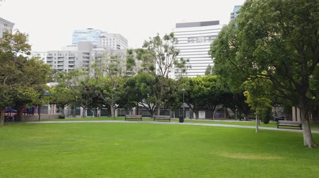 реальное время : Morning view of the Grand Hope Park in downtown Los Angeles, California