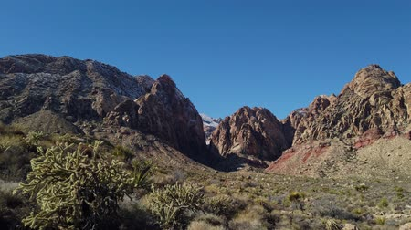 fluweel : Black Velvet Canyon of the famous Red Rock Canyon National Conservation Area near Las Vegas, Nevada