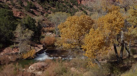 venkovský : Beautiful autumn landscape around Zion National Park at Utah