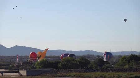 Morning view of the famous Albuquerque International Balloon Fiesta event at New Mexico Stock mozgókép