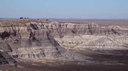 nps : Beautiful landscape of Petrified Forest National Park at Arizona Stock Footage