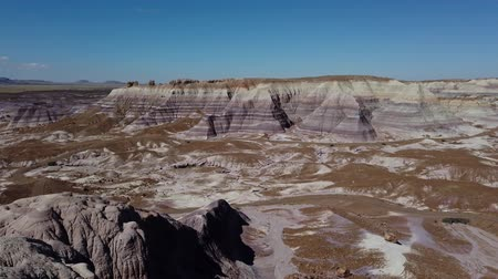kövület : Beautiful landscape of Petrified Forest National Park at Arizona Stock mozgókép