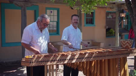 traditional instruments : Albuquerque, OCT 5: Two old man performance of traditional music on OCT 5, 2019 at Albuquerque, New Mexico Stock Footage