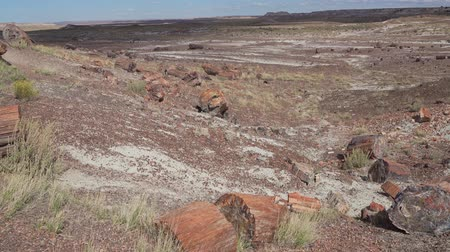 Beautiful landscape of Petrified Forest National Park at Arizona Vídeos