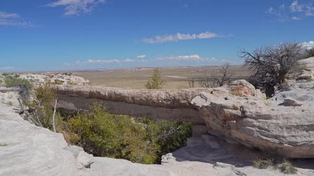 Beautiful landscape of Agate Bridge, Petrified Forest National Park at Arizona Vídeos