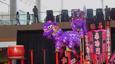 ano novo chinês : Las Vegas, JAN 26:  Lion dance walking on the small circular platforms on poles in the Fashion Show shopping mall on JAN 26, 2020 at Las Vegas, Nevada Vídeos