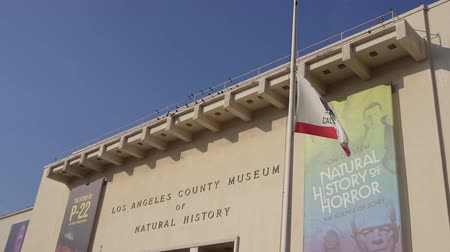 los angeles county : Los Angeles, Jan 15: Exterior view of the Natural History Museum of Los Angeles County (NHM) on JAN 15, 2020 at Los Angeles, California Stock Footage