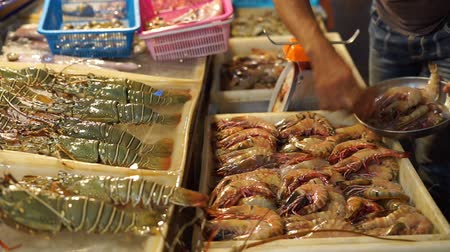 cigalas : Comerciante vendiendo mariscos frescos en el mercado nocturno local en Phuket, Tailandia Archivo de Video