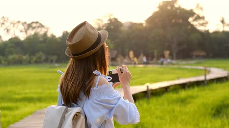 Young woman traveler taking a photo at beautiful green paddy field