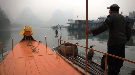 guangxi : YANGSHUO - JUNE, 2015: traditional fishing with using trained cormorants. Yangshuo, China.