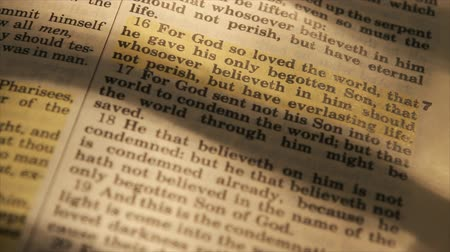 rolety : A closeup of  the text of a Bible from chapter 3 verse 16 of the book of John.