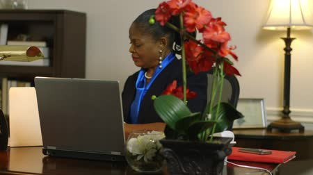 deneyimli : Flowers adorn the desk of this lovely African American corporate CEO or small business owner busy working on laptop computer.