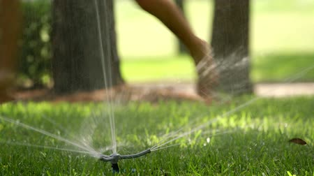 infantil : closeup of a lawn sprinkler and the feet of two kids jumping over the water. Vídeos