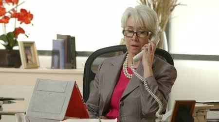 владелец : An older female CEO or business owner sitting in her office using tablet pc take a phone call.