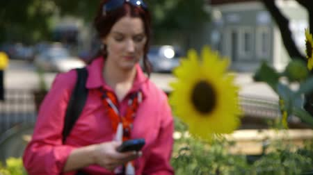 подсолнухи : Scene tracks from sunflowers growing in an urban area to a lovely woman texting on her smart phone who looks up momentarily and then continues her messaging. Handheld shot, organic feel, natural lighting
